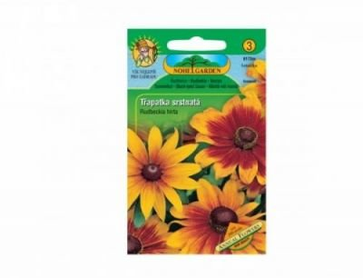 Třapatka srstnatá Annual flowers