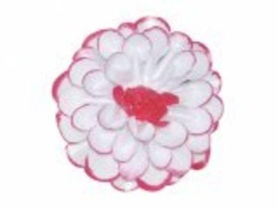 Jiřina POMP 8cm bílá  lo-červená