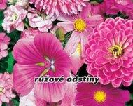Směs letniček - růžové odstíny - osivo letniček