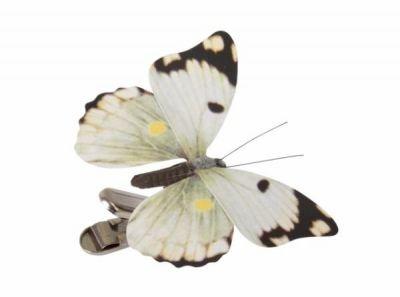 Motýl s klipem 7cm 12ks černo-bílá  BAU