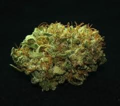 Mr. Nice seeds - NL5 x Haze 18 ks