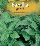 Bazalka pravá