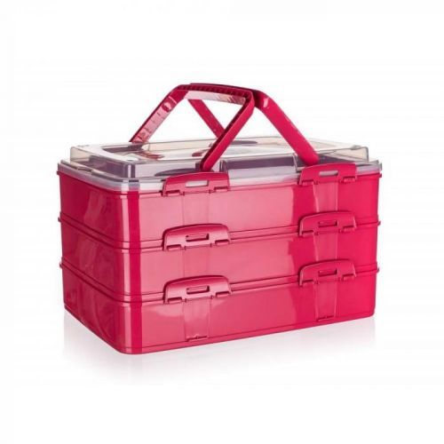 BANQUET Box úložný na potraviny PIKNIK PARTY 42x29x25cm malinový